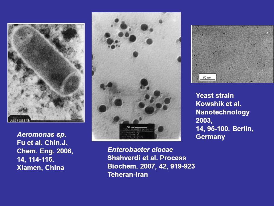 Yeast strain Kowshik et al. Nanotechnology 2003, 14, 95-100. Berlin, Germany. Aeromonas sp. Fu et al. Chin.J.