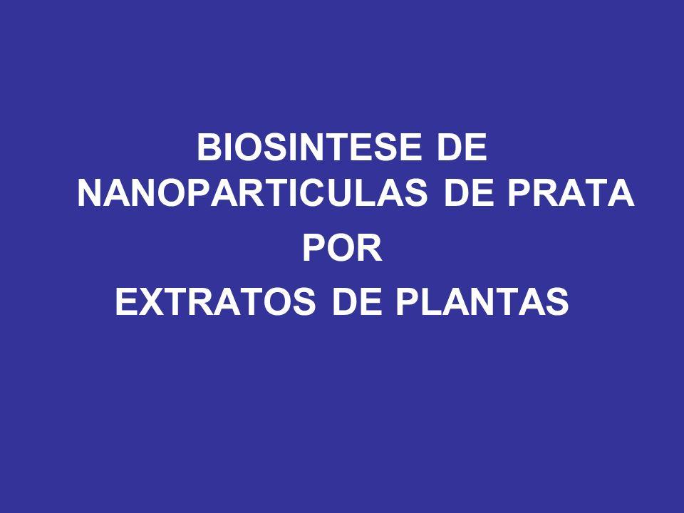 BIOSINTESE DE NANOPARTICULAS DE PRATA