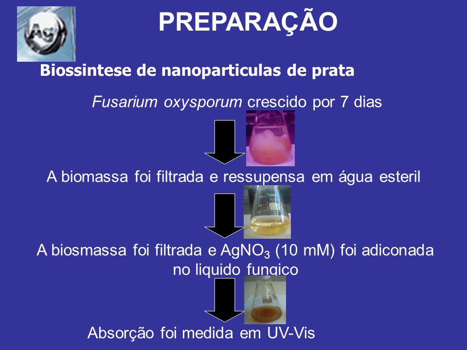 PREPARAÇÃO Biossintese de nanoparticulas de prata