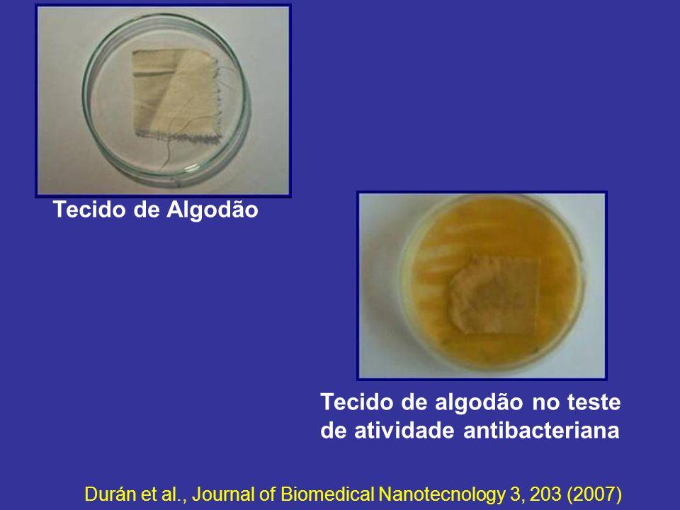 Tecido de algodão no teste de atividade antibacteriana