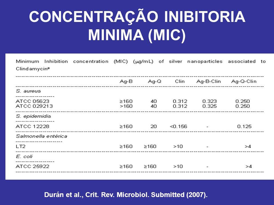 CONCENTRAÇÃO INIBITORIA MINIMA (MIC)