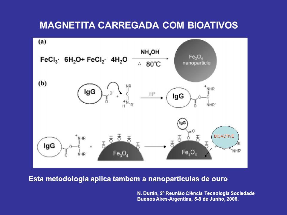 MAGNETITA CARREGADA COM BIOATIVOS