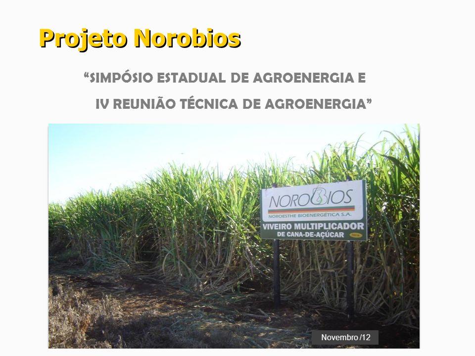 Projeto Norobios SIMPÓSIO ESTADUAL DE AGROENERGIA E
