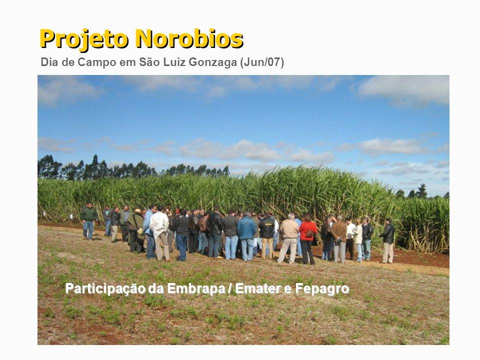 Projeto Norobios Participação da Embrapa / Emater e Fepagro
