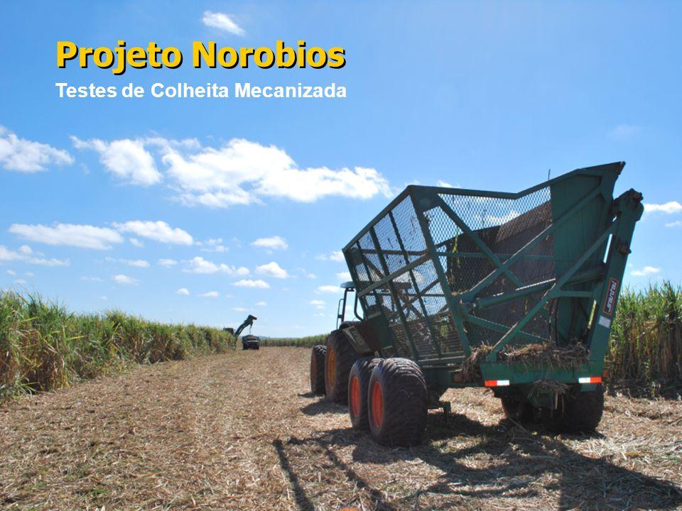 Projeto Norobios Testes de Colheita Mecanizada