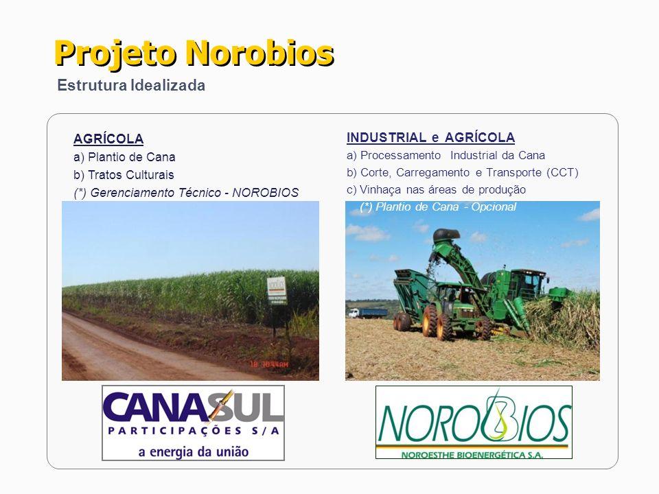 Projeto Norobios Estrutura Idealizada AGRÍCOLA INDUSTRIAL e AGRÍCOLA