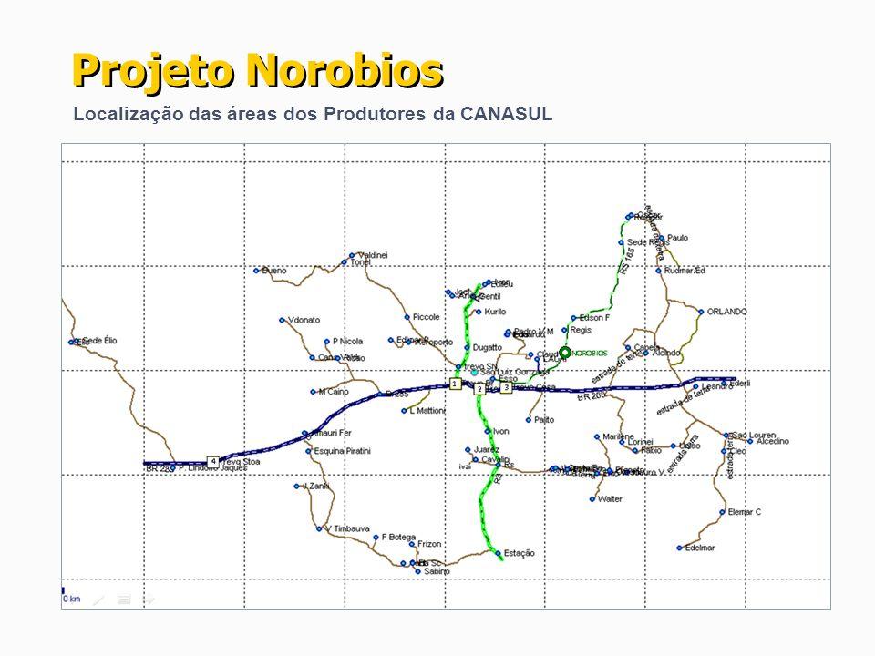 Projeto Norobios Localização das áreas dos Produtores da CANASUL