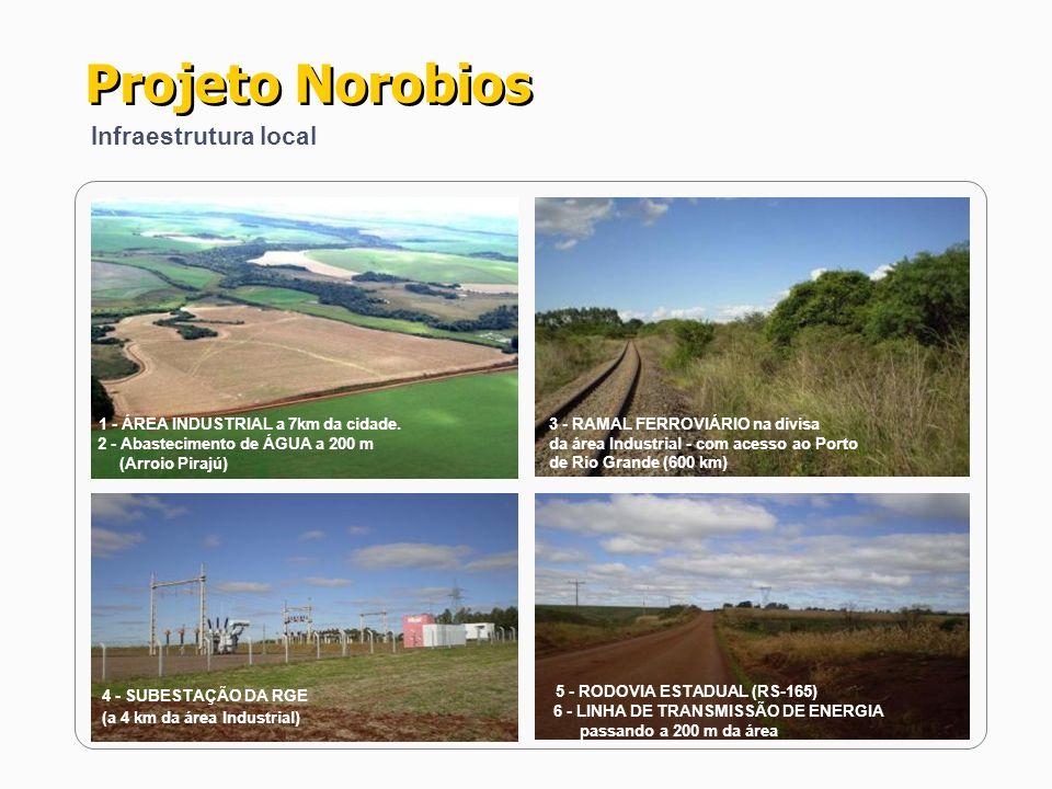 Projeto Norobios 4 - SUBESTAÇÃO DA RGE Infraestrutura local