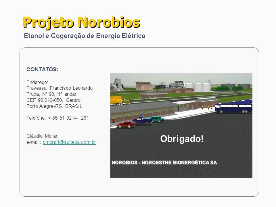 Projeto Norobios Obrigado! Etanol e Cogeração de Energia Elétrica