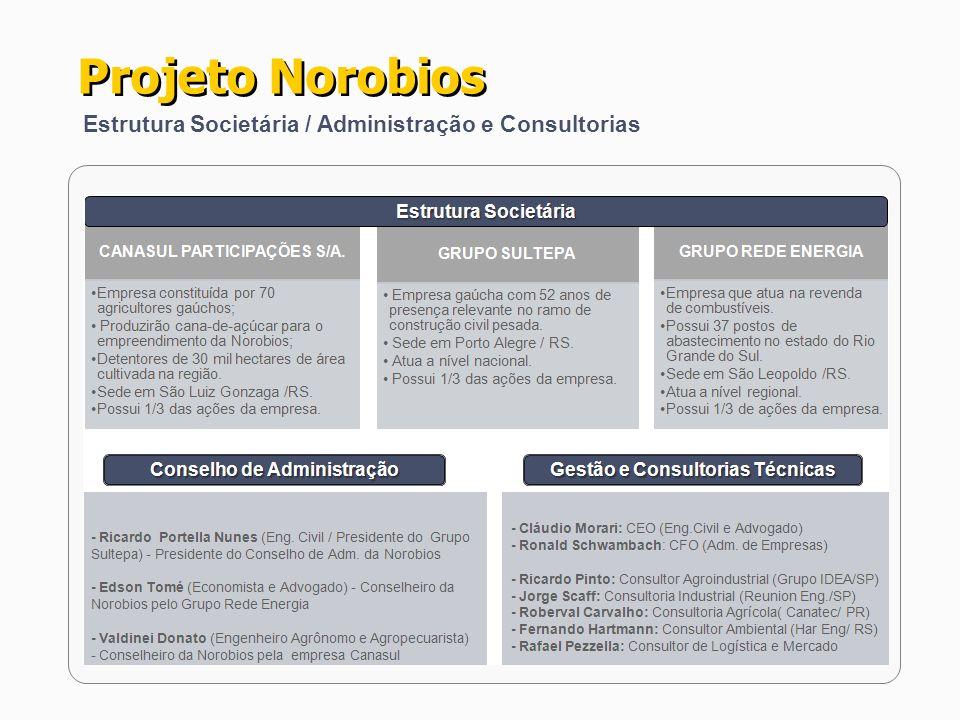 Projeto Norobios Estrutura Societária / Administração e Consultorias