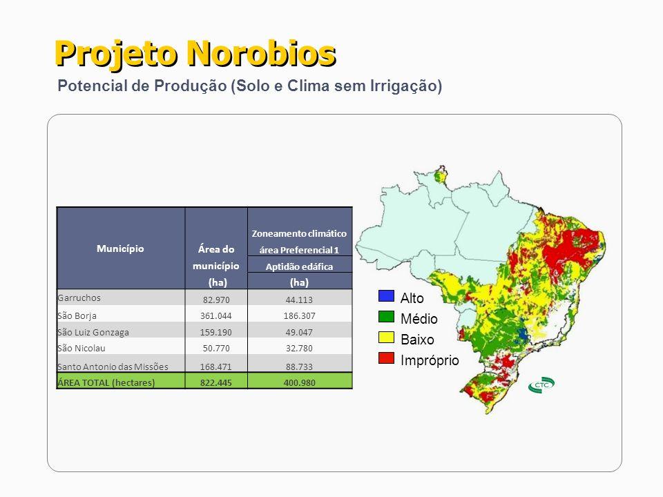 Projeto Norobios Potencial de Produção (Solo e Clima sem Irrigação)