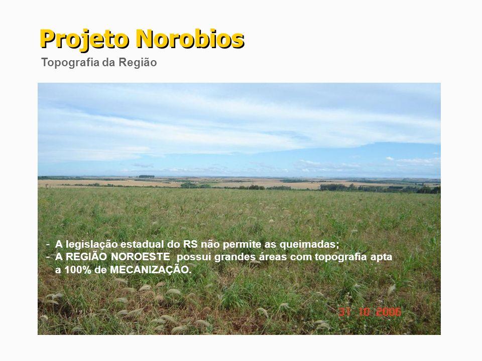 Projeto Norobios Topografia da Região