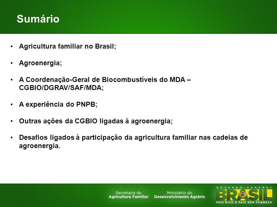 Sumário Agricultura familiar no Brasil; Agroenergia;