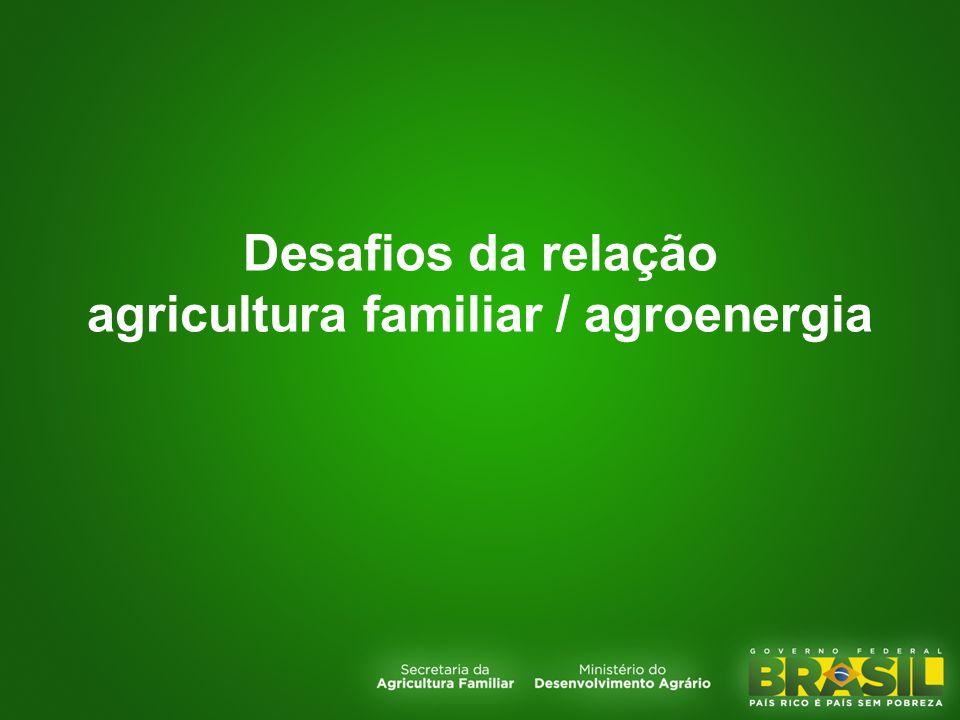 Desafios da relação agricultura familiar / agroenergia