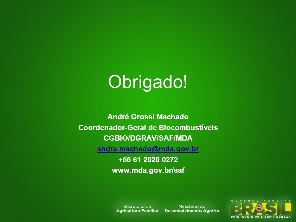Coordenador-Geral de Biocombustíveis