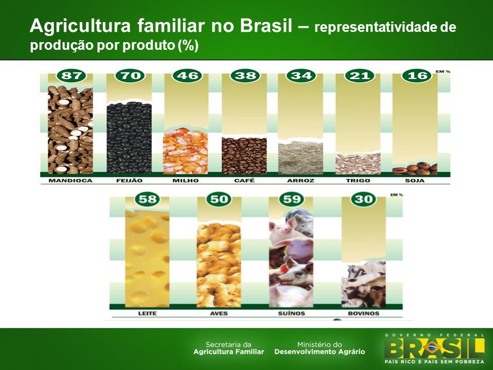 Agricultura familiar no Brasil – representatividade de produção por produto (%)