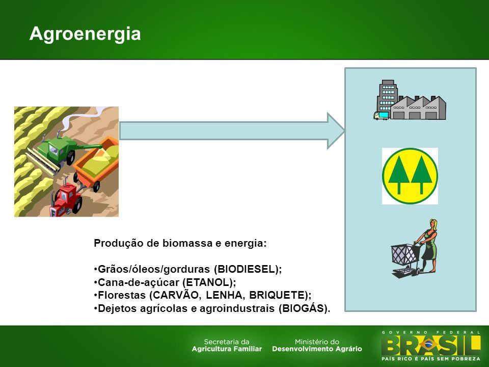 Agroenergia Produção de biomassa e energia: