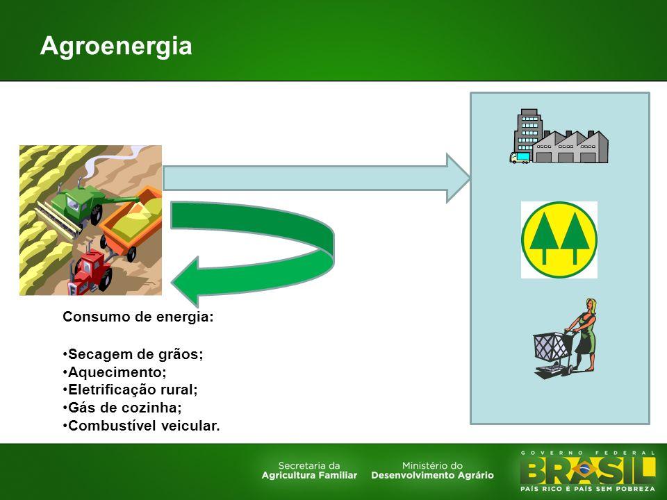 Agroenergia Consumo de energia: Secagem de grãos; Aquecimento;