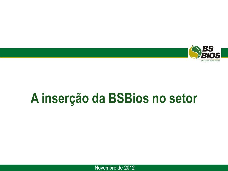 A inserção da BSBios no setor