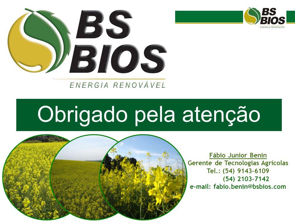 Gerente de Tecnologias Agrícolas e-mail: fabio.benin@bsbios.com