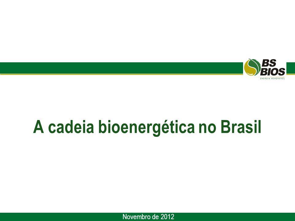 A cadeia bioenergética no Brasil