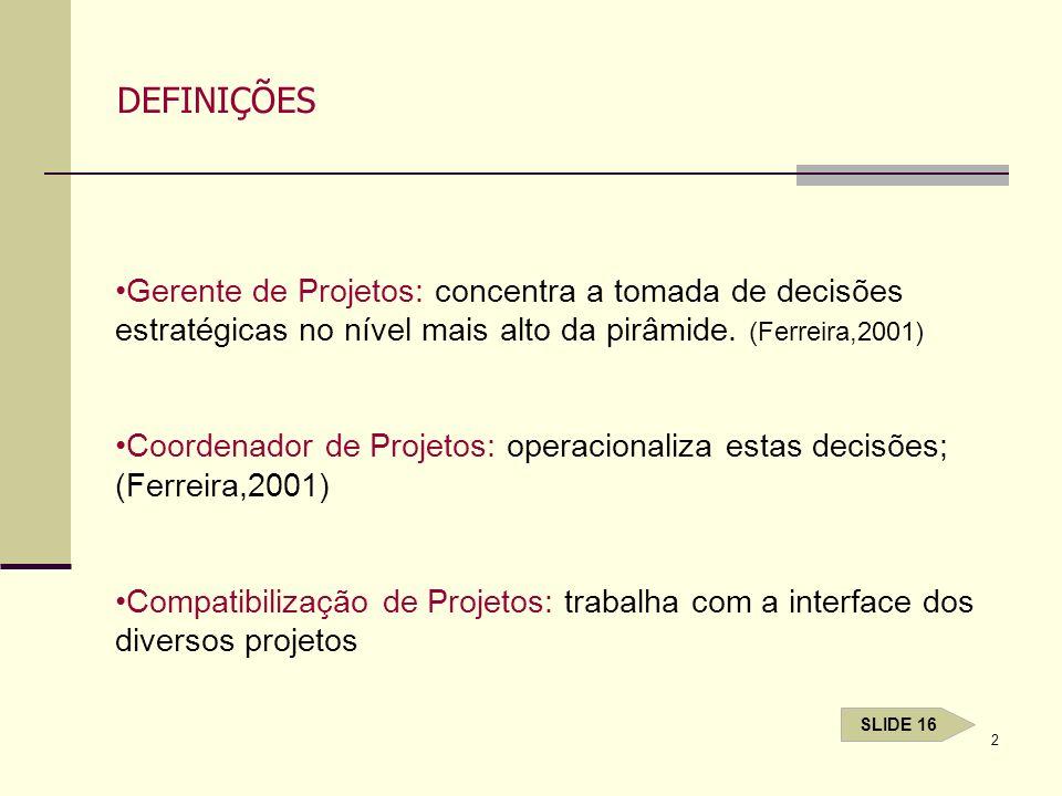 DEFINIÇÕESGerente de Projetos: concentra a tomada de decisões estratégicas no nível mais alto da pirâmide. (Ferreira,2001)