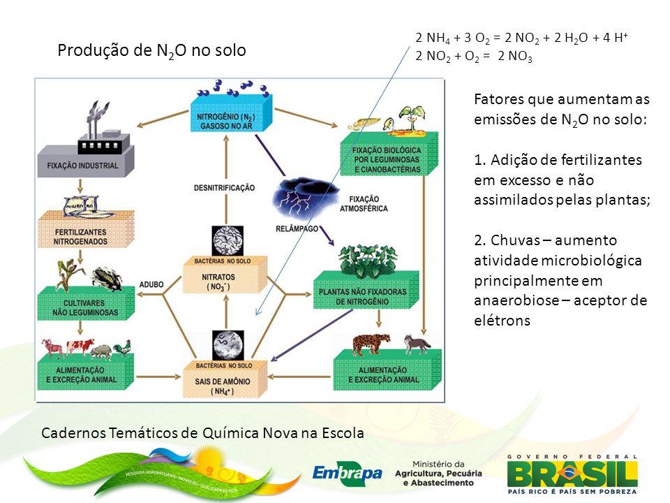 2 NH4 + 3 O2 = 2 NO2 + 2 H2O + 4 H+ 2 NO2 + O2 = 2 NO3. Produção de N2O no solo. Fatores que aumentam as emissões de N2O no solo: