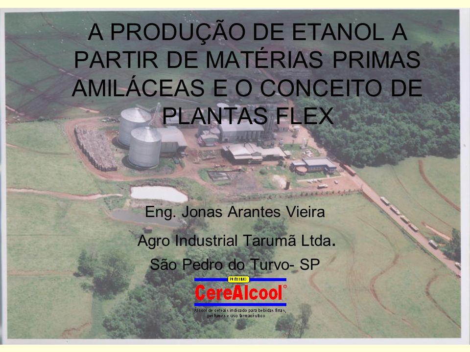 A PRODUÇÃO DE ETANOL A PARTIR DE MATÉRIAS PRIMAS AMILÁCEAS E O CONCEITO DE PLANTAS FLEX