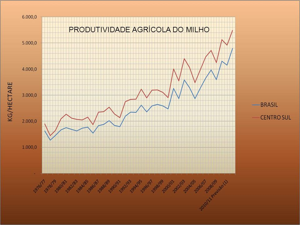 PRODUTIVIDADE AGRÍCOLA DO MILHO