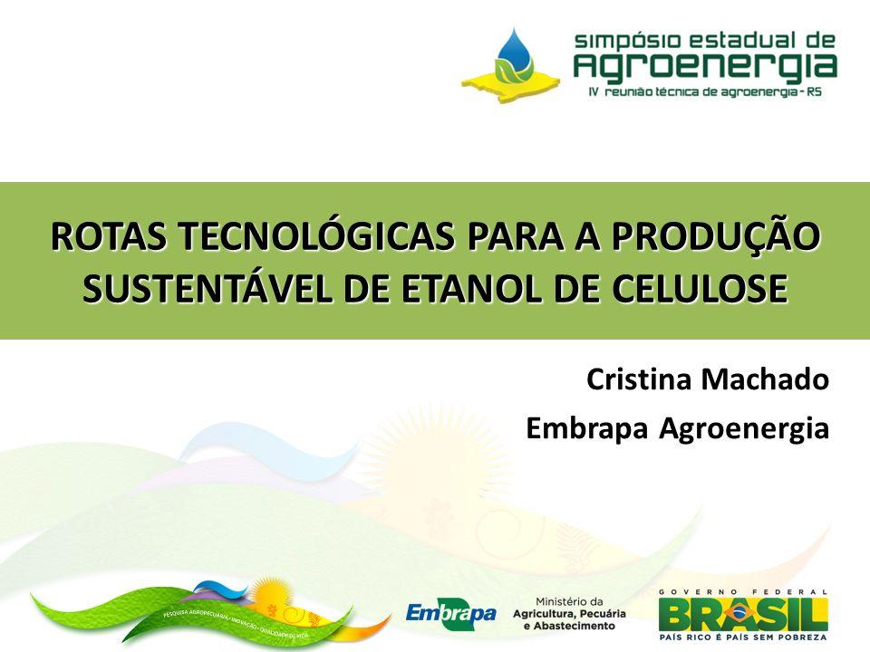 Cristina Machado Embrapa Agroenergia