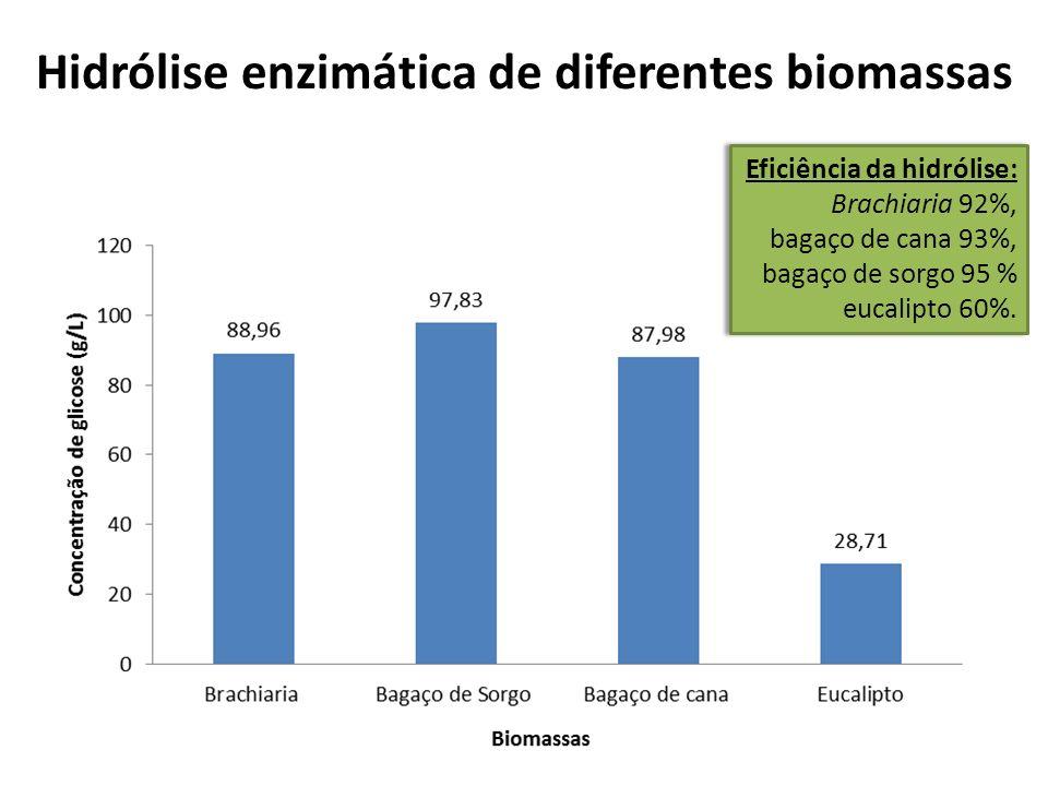 Hidrólise enzimática de diferentes biomassas