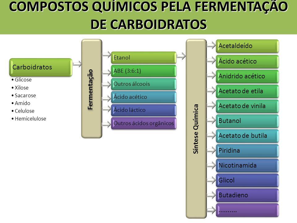 COMPOSTOS QUÍMICOS PELA FERMENTAÇÃO DE CARBOIDRATOS