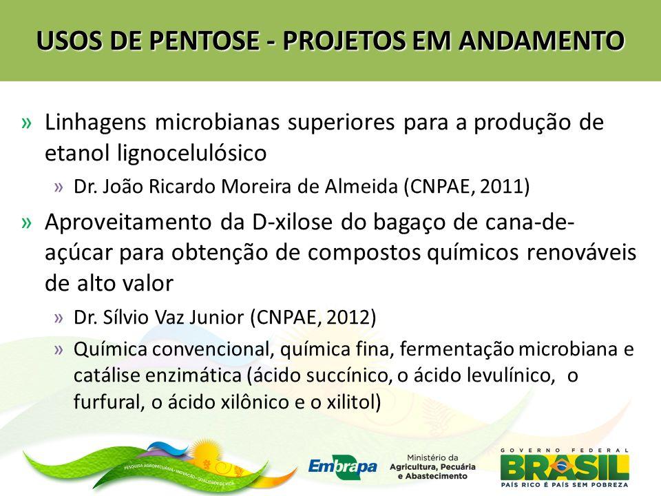 USOS DE PENTOSE - PROJETOS EM ANDAMENTO