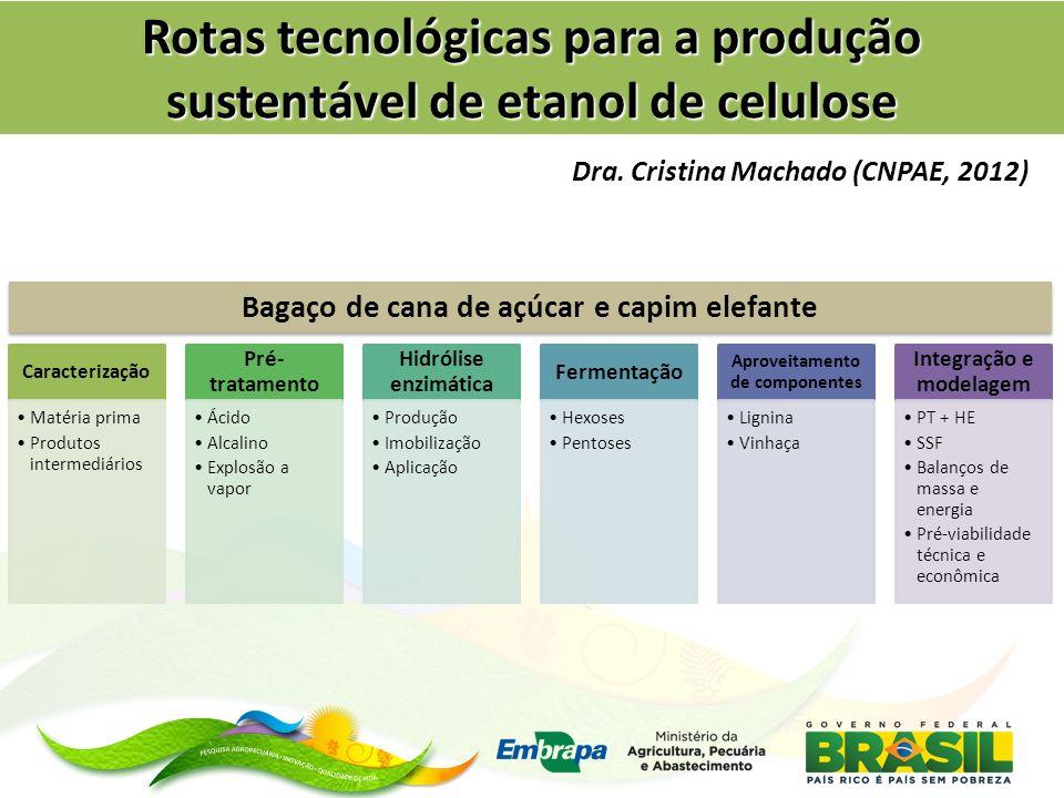 Rotas tecnológicas para a produção sustentável de etanol de celulose