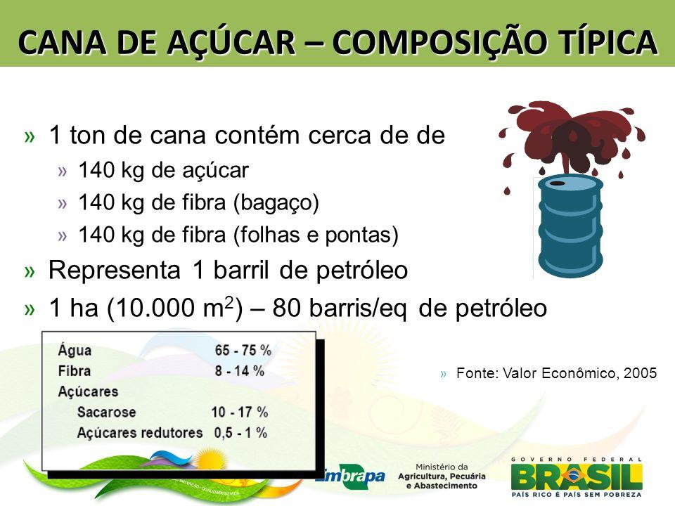 CANA DE AÇÚCAR – COMPOSIÇÃO TÍPICA