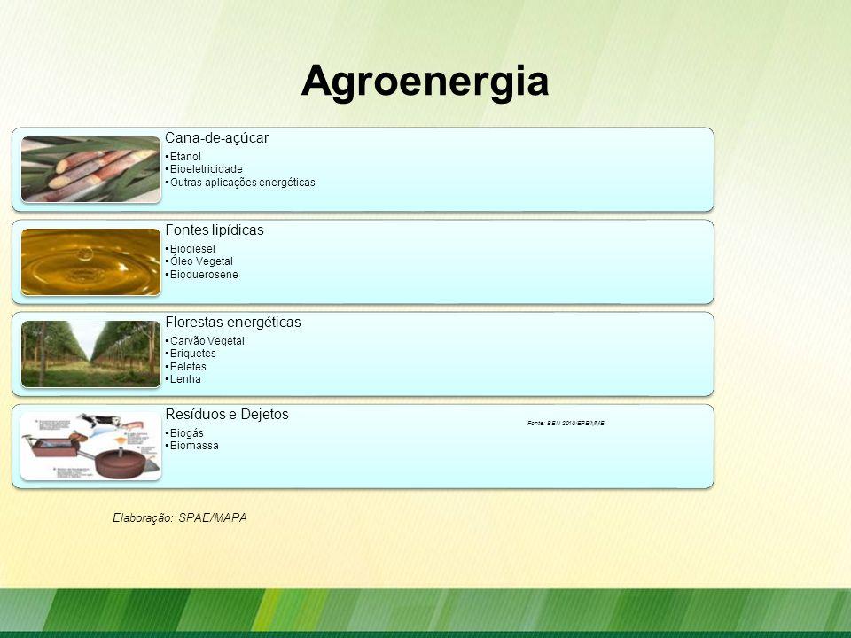 Agroenergia Elaboração: SPAE/MAPA Fonte: BEN 2010/EPE/MME