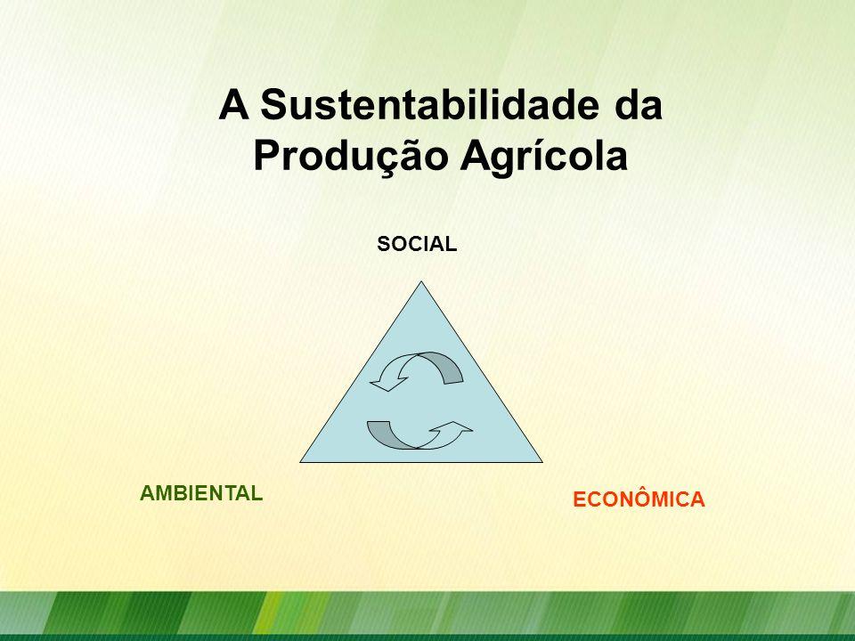 A Sustentabilidade da Produção Agrícola