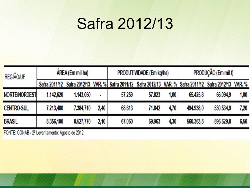 Safra 2012/13