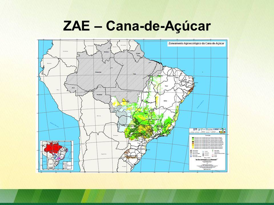 ZAE – Cana-de-Açúcar
