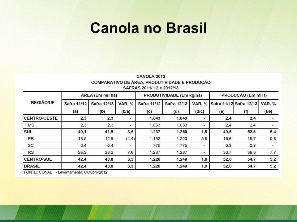 Canola no Brasil