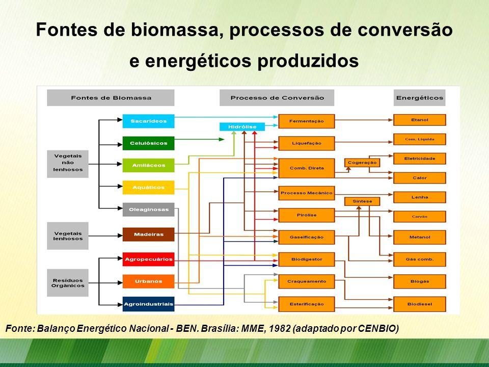 Fontes de biomassa, processos de conversão e energéticos produzidos