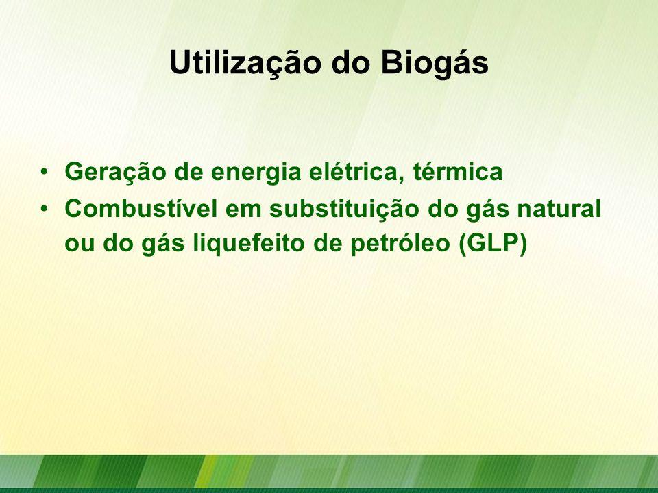 Utilização do Biogás Geração de energia elétrica, térmica