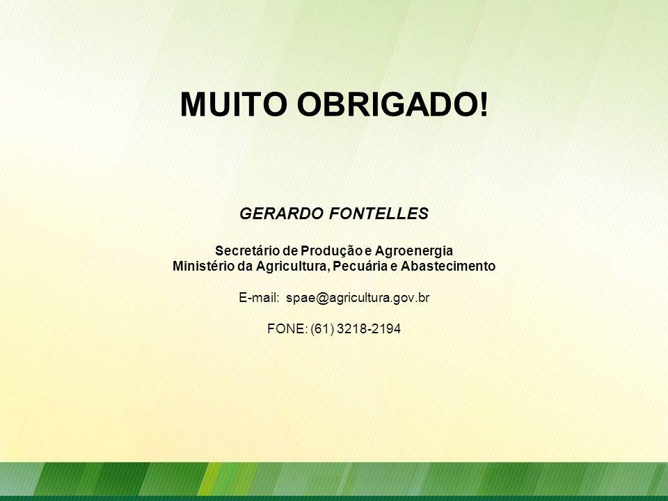 MUITO OBRIGADO! GERARDO FONTELLES Secretário de Produção e Agroenergia