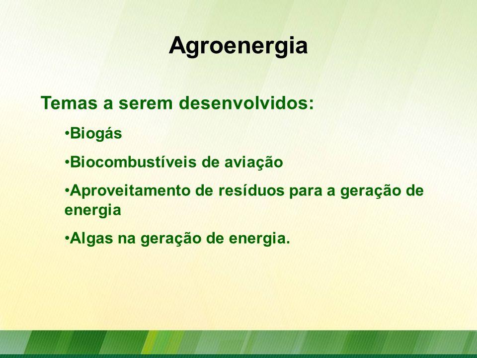 Agroenergia Temas a serem desenvolvidos: Biogás