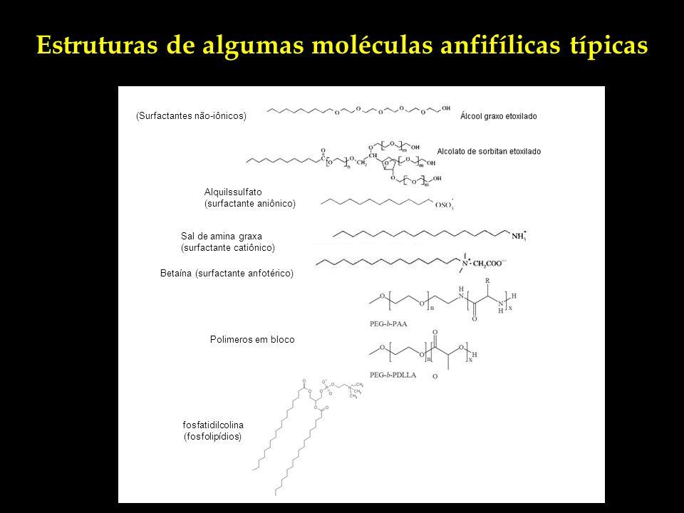 Estruturas de algumas moléculas anfifílicas típicas