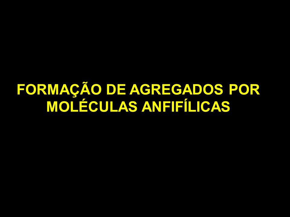 FORMAÇÃO DE AGREGADOS POR MOLÉCULAS ANFIFÍLICAS