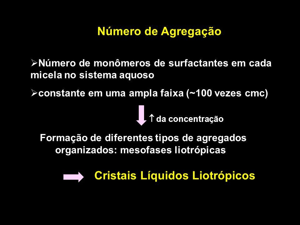 Cristais Líquidos Liotrópicos