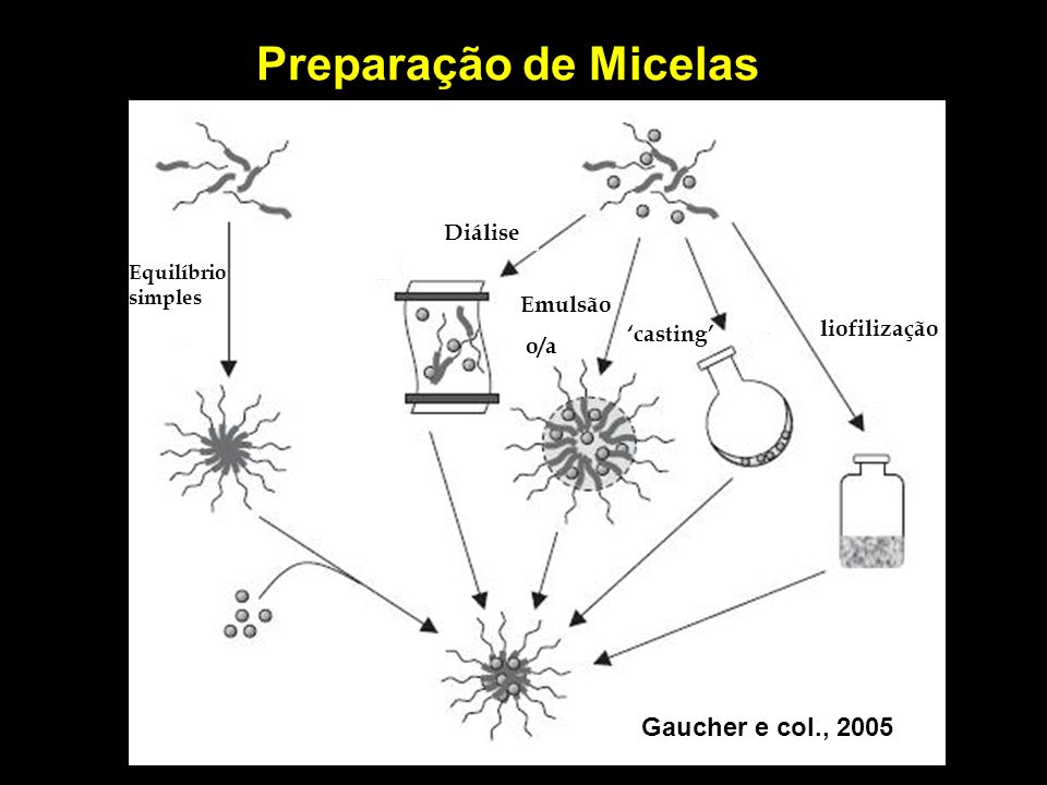 Preparação de Micelas Gaucher e col., 2005 Diálise Emulsão o/a
