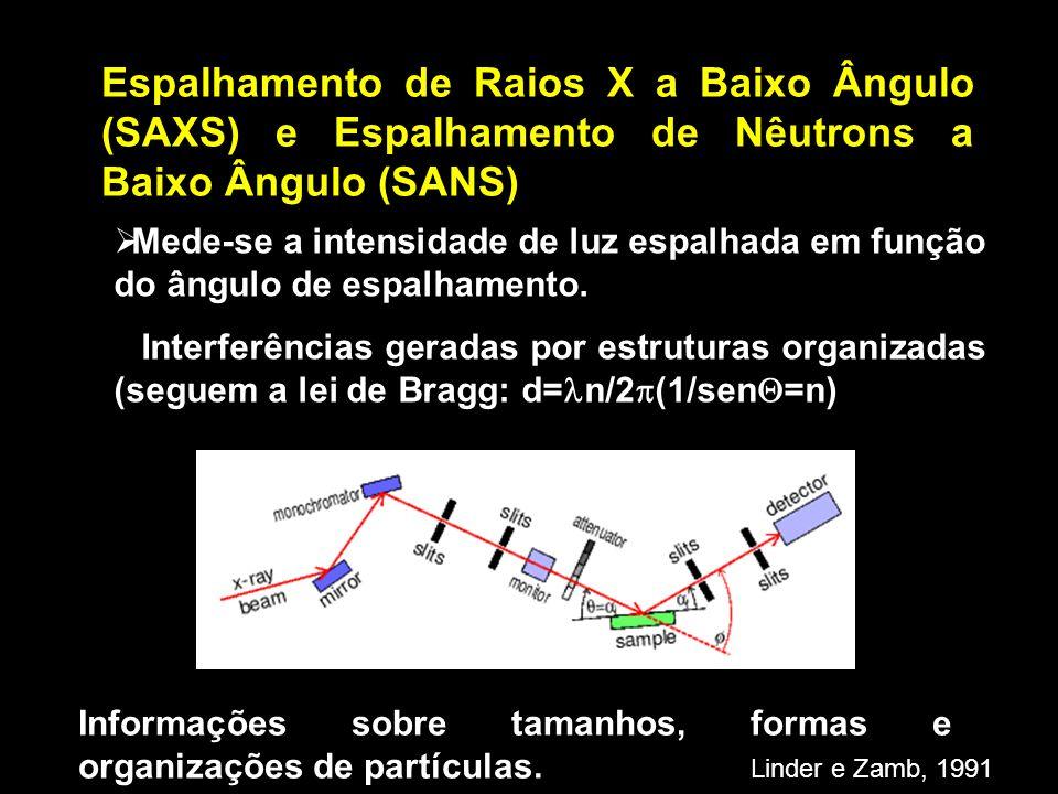 Espalhamento de Raios X a Baixo Ângulo (SAXS) e Espalhamento de Nêutrons a Baixo Ângulo (SANS)