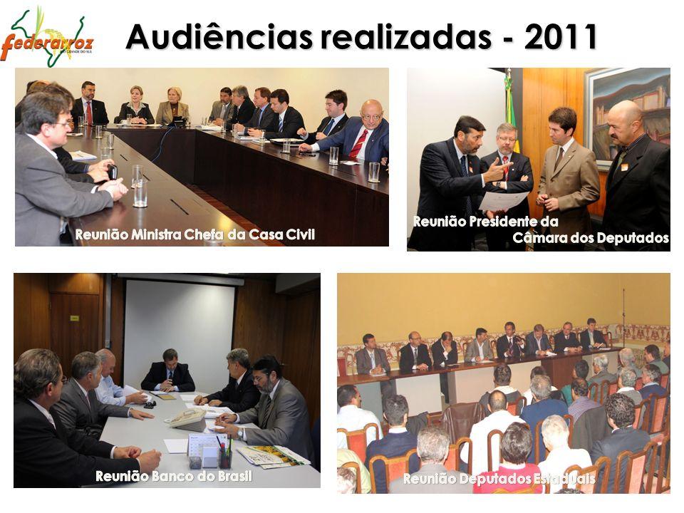 Audiências realizadas - 2011